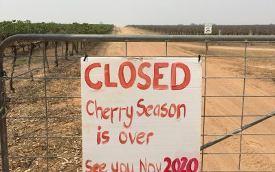 2019 Cherry season closed